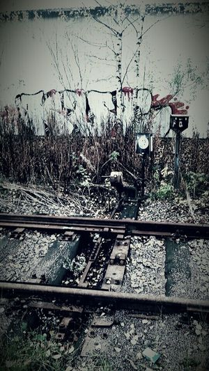 It was once Railway Old Railway Graffiti Art Eye4photography  From My Point Of View MyPhotography Check This Out EyeEm 2015 Autumn Where Does It Lead?