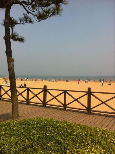 golden beach Enjoying Life