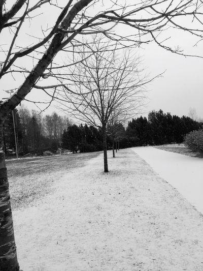 winter❤️ Winter Wonderland