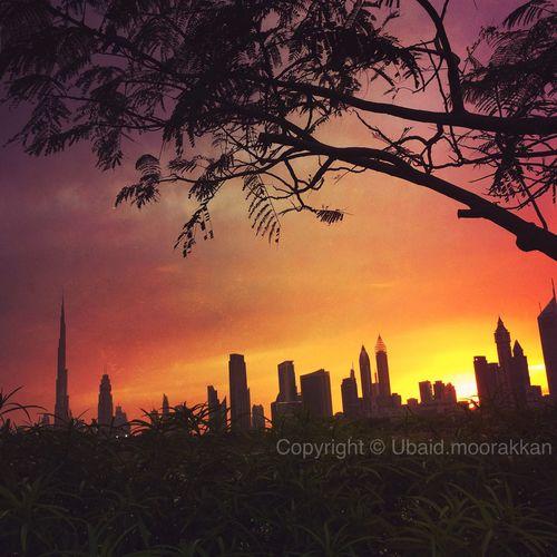 Mydubai Zabeel Zabeelpalace UAE , Dubai Sunset Skyline