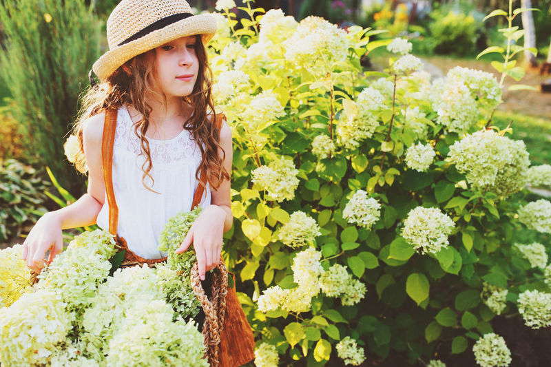 happy romantic kid girl playing and picking flowers in sunny summer garden Hat Plant One Person Flowering Plant Leisure Activity Nature Day Lifestyles Outdoors Sun Hat Kid Childhood Child Girl Hydrangea Summer Summertime Garden Gardener Garden Flowers Authentic Moments Vacations Country Life Rural