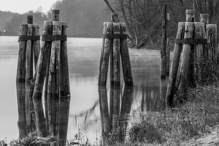 The Dock at Ferry Landing in Rocky Hill Connecticut at dawn in winter in Black and White Water Day Nature No People Wood - Material Plant Land Tree Lake Tranquility Outdoors Built Structure Reflection Architecture Wooden Post Boundary Fence Tranquil Scene