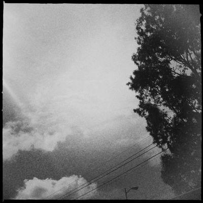La nada. #Hipstamatic #Jimmy #US1776 Tree Cloud Bw Cielo árbol Jimmy Blancoynegro Mextagram Byn Nube Us1776 Igersmexico Hipstamatic Sky
