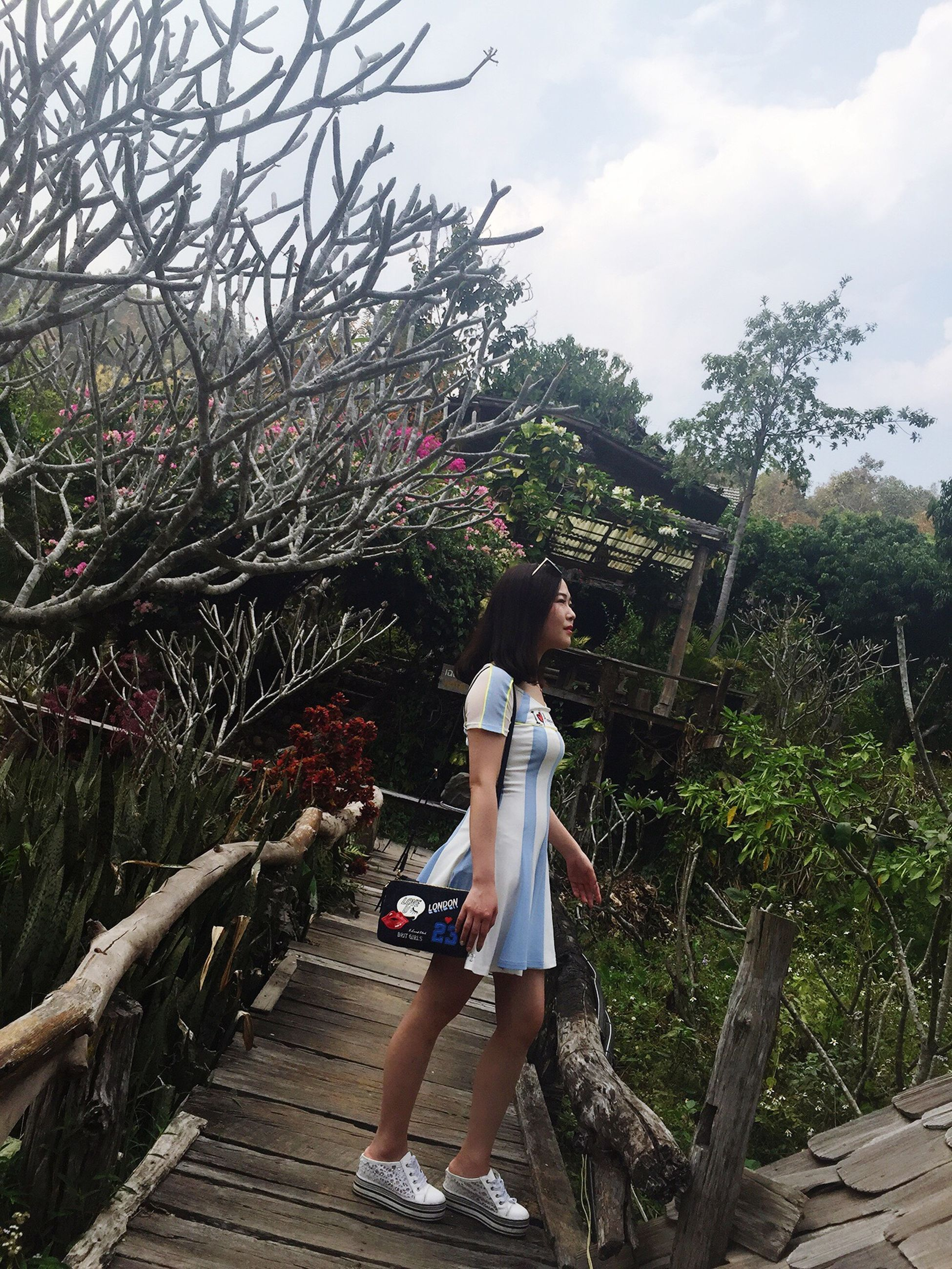 lifestyles, full length, tree, casual clothing, leisure activity, young women, young adult, person, rear view, sky, standing, growth, flower, childhood, walking, girls, plant