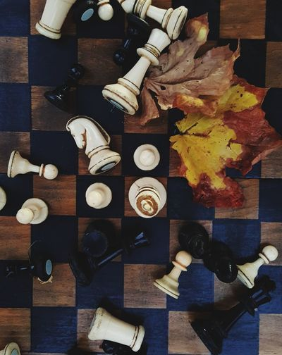 fall chess. playing chees in Autumn. Chess Chess Piece Old Autumn colors Autumn Collection Strategy Game Mind Game Fallen Leaf Yellow King Queen - Chess Piece Pawn - Chess Piece Top View Horse Chess Piece Variation Close-up Wooden King - Chess Piece Knight - Chess Piece Board Game Chess Board Strategy