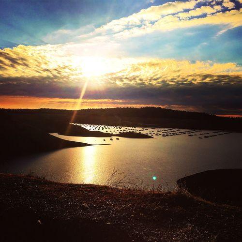 Oroville Lake Water Water Reflections Lake Scenics California