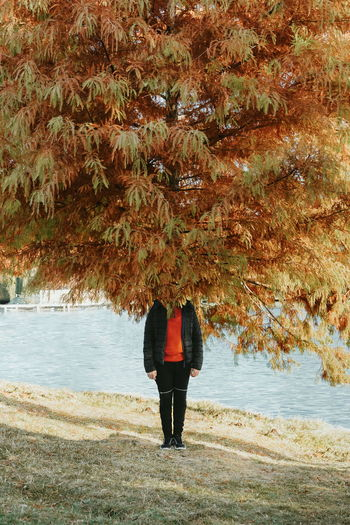 Talk with the trees, they really listen. Autumn Fall One Person People Illusion Tree Water Standing Full Length Men Lake Shore Leaves Autumn Collection This Is Strength Autumn Mood