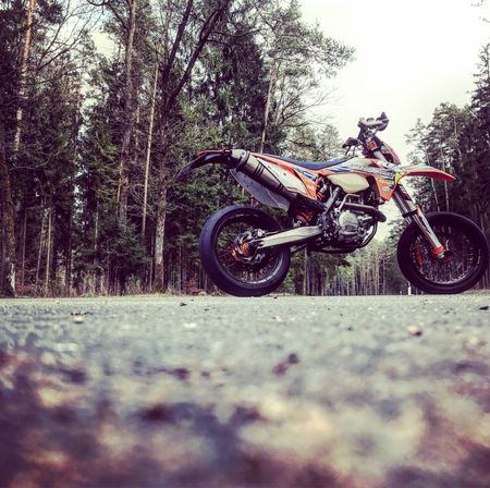 Sports Race Rider Extreme Sports Sport Tree Forest Adventure Outdoors Day Stunt Competition Sports Track Ktm Motorcycle Racing Motorsport Summer Motoroox Brembo  Akrapovic Motomaster Sun Supermoto Exc Motorcycle EyeEmNewHere