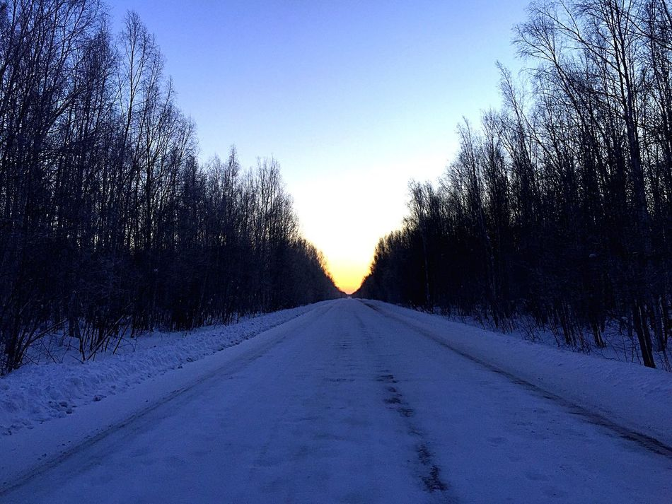 Road Sunset IPhoneography Road The Way Forward Tree Road No People Nature Clear Sky Sky Outdoors Day Beauty In Nature Snow
