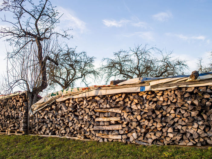 Firewood for the heating periode Tree Stack Log Timber Woodpile Nature Wood Firewood Plant Lumber Industry Sky Large Group Of Objects Wood - Material Architecture Deforestation Forest Abundance No People Heap Day Outdoors Stone Wall