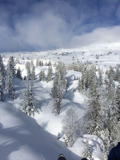 Snow Winter Ski Mountains Cold Sun Enjoying Life France ❄️☀️