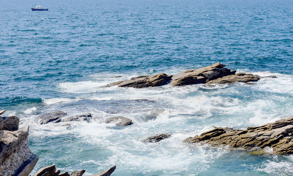 Nice and calm sea Animal Wildlife Animals In The Wild Beach Beauty In Nature Blue Day Land Marine Motion Nature No People Outdoors Rock Rock - Object Scenics - Nature Sea Solid Sport Water Wave