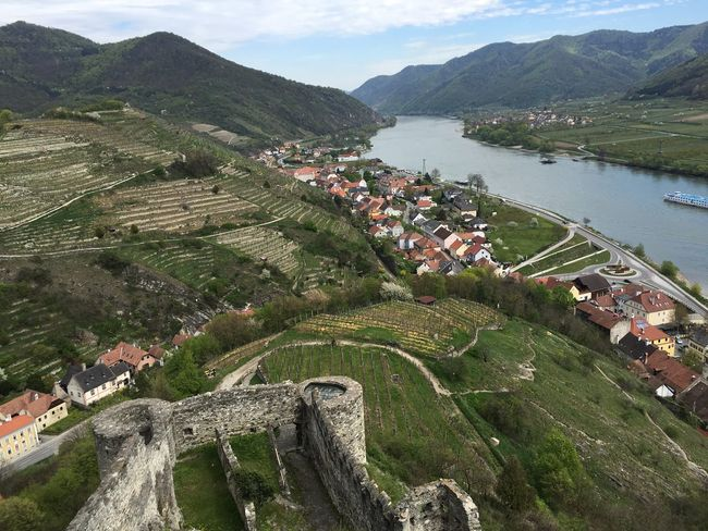 View from a castle ruin over the Danube river, Austria. Architecture Beauty In Nature Building Exterior Built Structure Castle Danube Danube River Day Grass High Angle View Landscape Mountain Mountain Range Nature No People Outdoors Scenics Sky Tranquility Transportation Tree Vineyard Water