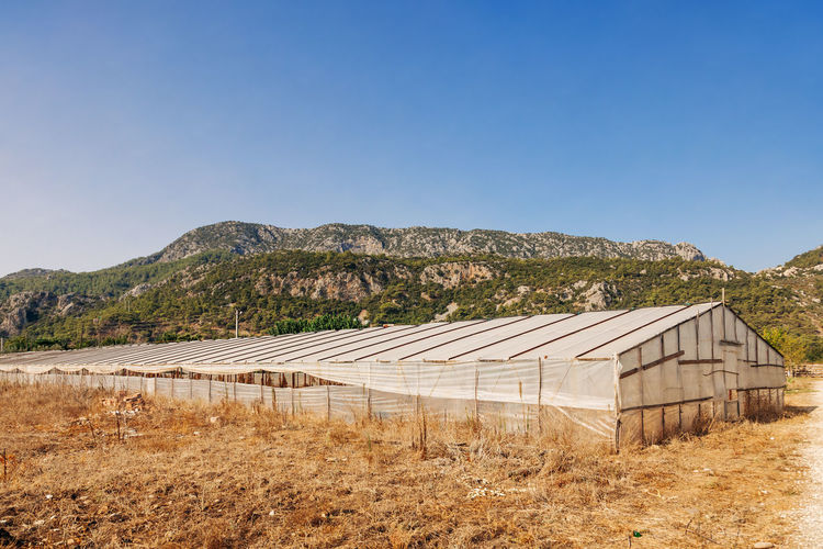 Greenhouse in front of Taurus Mountains - Cirali, Antalya Province, Turkey, Asia Greenhouse Plastic Plastic Environment - LIMEX IMAGINE Turkey Türkiye Empty Antalya Run-down Countryside Drought Arid Climate Arid Summer Nursery Rural Scene Damaged Agriculture Environment Farm Farmland Farm Life Taurus Mountains Shielding Shelter Blue Sky Sky Clear Sky Mountain Architecture Copy Space Blue Built Structure Nature Land Day No People Landscape Scenics - Nature Sunlight Building Exterior Tranquility Tranquil Scene Field Beauty In Nature Outdoors