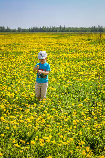 Baby Dandelions Beauty In Nature Child Dandelions Bloom Day Flower Kid Landscape Nature One Person Outdoors Plant Real People Rural Scene Scenics - Nature Vertical