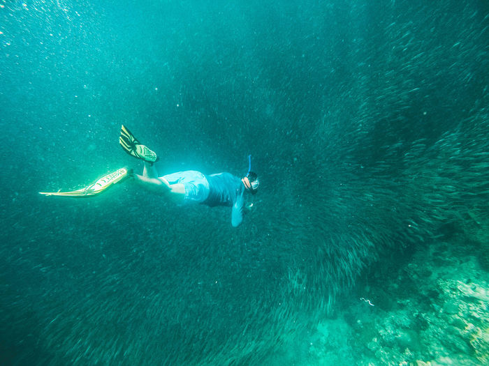 Sadine run Sea Water Swimming Underwater UnderSea Adventure Sport Leisure Activity One Person Aquatic Sport Real People Nature Lifestyles Animal Wildlife Animals In The Wild Full Length Day Outdoors Snorkeling Marine Turquoise Colored