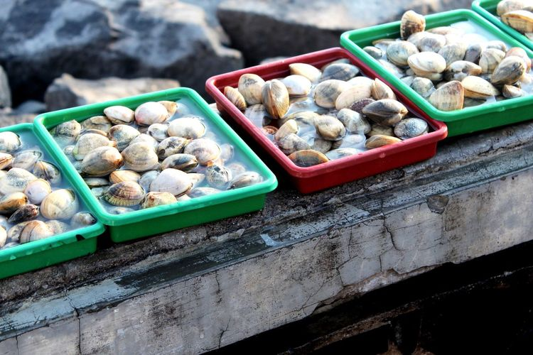 High angle view of mussels for sale at fish market