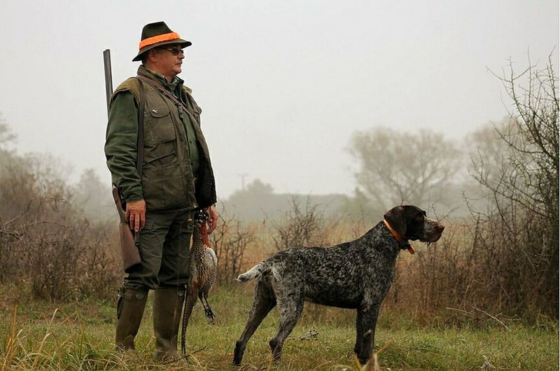 Dog Pets One Man Only Hunting Hunter Hunters HunterClouds Hunter Dog Hunting Photo Dog Life