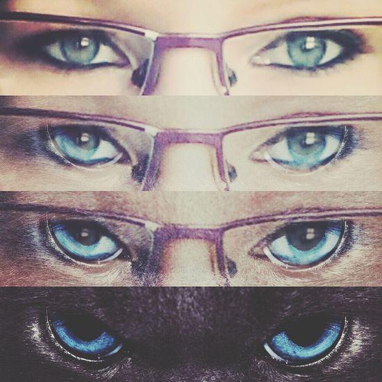 Yeux Bleus Mes Yeux Blue Eyes Hi! :)