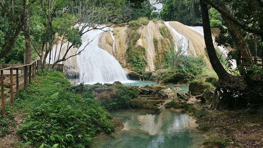 Mexico Chiapas Nature Explore Relaxing