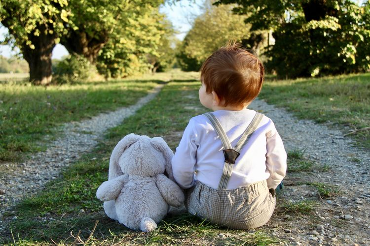 Rear View Of Baby Boy Sitting With Toy Animal At Park