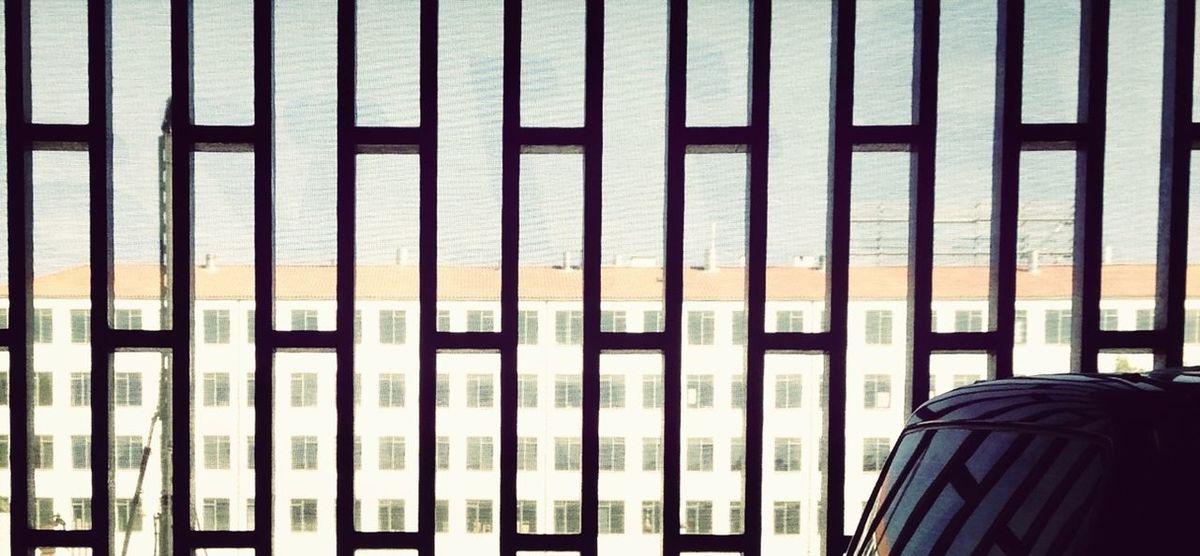 Lines Lookingout Urban Spaces