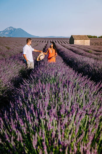 Purple flowers on field against sky