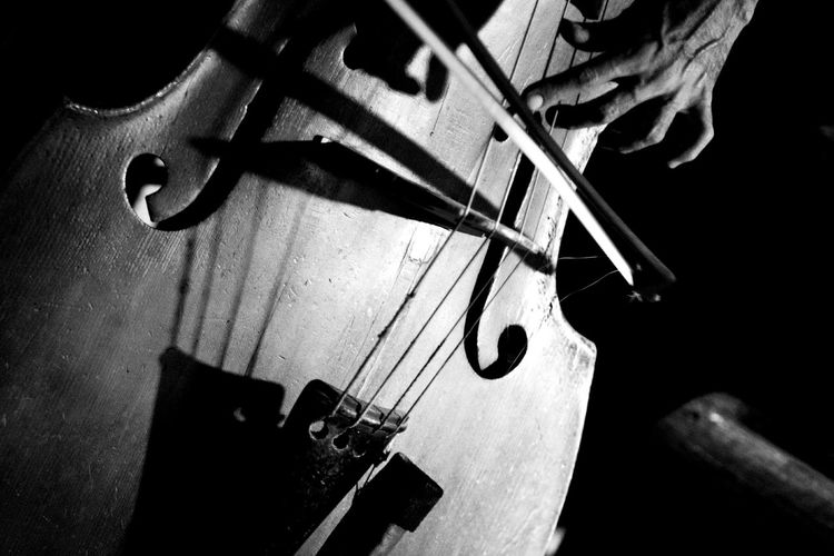 Close-Up Of Man Playing Double Bass