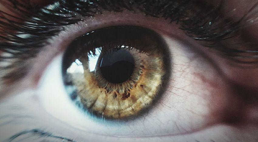Human Eye Macro Sensory Perception Iris - Eye Womaneye Eyeemhuman Looking At Camera Extreme Close-up Colours Of Nature Simplicity Human Body Part
