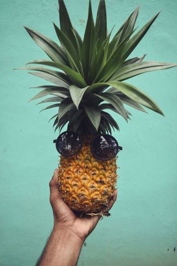 Thug Life Fruit Food First Eyeem Photo Beauty In Nature Beautiful Human Hand Eating Holding Drink Water Studio Shot Close-up Food And Drink Pineapple Mango Starfruit Sour Taste Mango Fruit Ice Cream Cone Papaya Rose Hip Lychee Pastry Palm Tree Fruit Salad Banana Kiwi - Fruit Pitaya Tropical Fruit