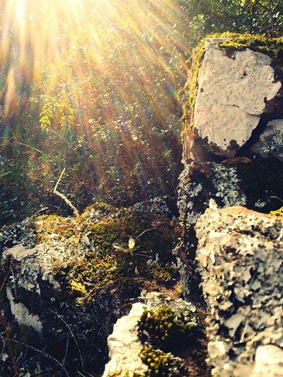En el pozo hondo, en la tierra de Carlos Gardel.. Relaxing