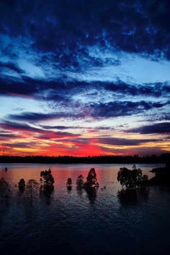 Sunset Sky Water Beauty In Nature Cloud - Sky Scenics Nature Tranquility Tranquil Scene Sea Silhouette Reflection Outdoors Tree No People Horizon Over Water Day 拍