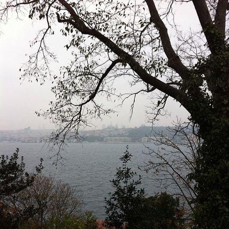 Istanbul Koru Park Türkiye bosphorus bogaz bogazkoprusu bridge kopru manzara nature fethipasa uskudar