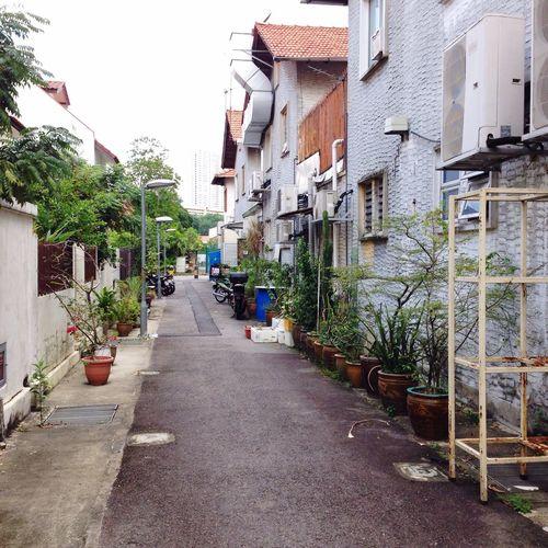Shophouse Landscape Alley