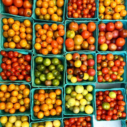 Tomatoes Farmers Market Red Topdown Birdseyeview Vegatables Unionsquare