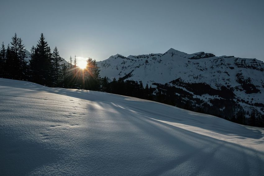 Long Shadows Nature Sunrays Trees Winter Beauty In Nature Cold Temperature Direct Sunlight Landscape Mountain Mountain Range Outdoors Scenics Snow Snowcapped Mountain Sunset