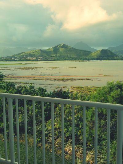 Hawaii First Eyeem Photo