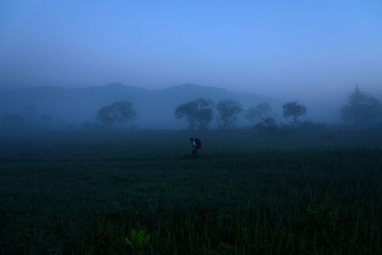 Man Walking On Grassy Field During Foggy Weather