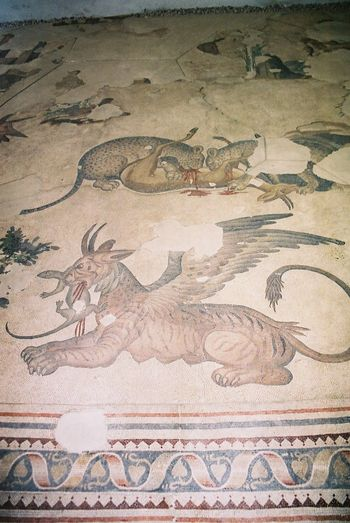 Mosaic at Mosaic Museum Ancient Animal Representation Art Art And Craft Blood Composition Creativity Design Dragon Full Frame Gruesome High Angle View Indoor Photography Istanbul Mosaic Multi Colured Museum No People Old Pattern Textured  Tourism Tourist Attraction  Turkey