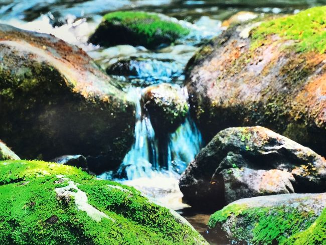 Rock - Object Water Nature No People Outdoors Day Green Color Beauty In Nature Scenics Close-up Hot Spring