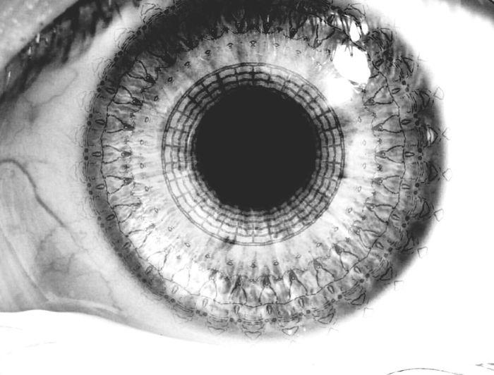 Human Eye Eyesight Human Body Part Eyeball Iris - Eye Eyelash Close-up One Person Day People