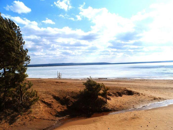 ИРКУТСК Лес песок пляж сибирь Иркутск Syberian Nature Syberia Залив вода Nature Sunset деревья Природа