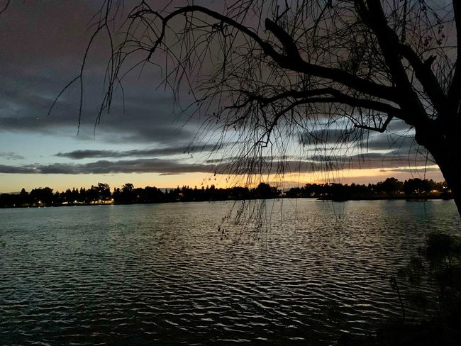 Twilight Lake Elizabeth Fremont Twilight Tree Sky Water Beauty In Nature Tranquility Plant Scenics - Nature Silhouette
