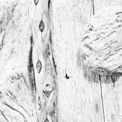 Driftwood Beachwood Pumice Pumicestone Whiteonwhite Fyp_whiteonwhite Beach White Filltheframe_nio Tv_simplicity Minimalgram Minimal_mood Minimal_int Minimal_nio Ss_bw_20 Fyp_wbg