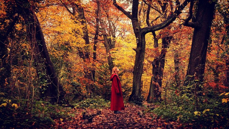 Side view of woman standing by trees in forest during autumn