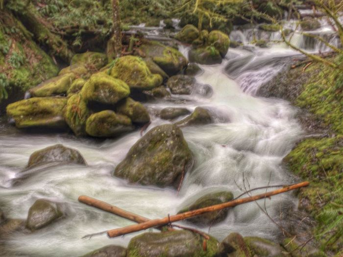 Above Multnoma Falls, beautiful river in the moss covered forest River Long Exposure No People Waterfall Nature Water Day Outdoors Beauty In Nature Freshness