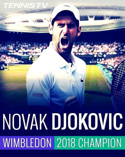 Novak Djokovic and Wimbledon 2018 Stadium Spectator Excitement Sport Performance Portrait Championship First Eyeem Photo