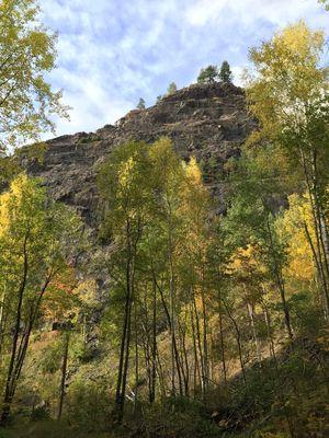 Mountain Taberg Autumn Autumn Colors Tree Trees First Eyeem Photo
