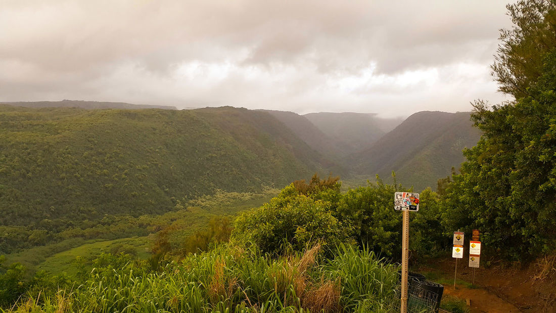 Hawaiian Pololu Valley Taking Photos Green Color Ocean Hiking The00Mission Island Life