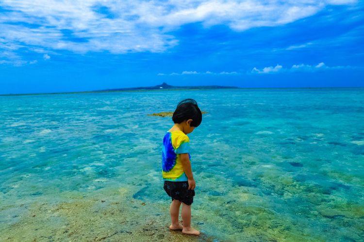 海岸 沖縄 美ら海水族館